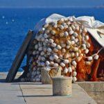 gal-fischernetz